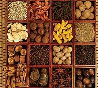 An Introduction to Indian Spices2